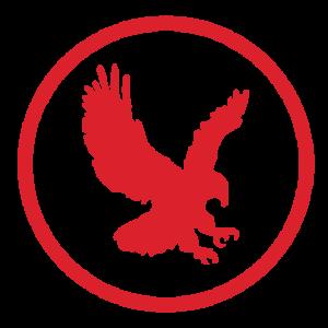 Hawk Emblem seo cairns
